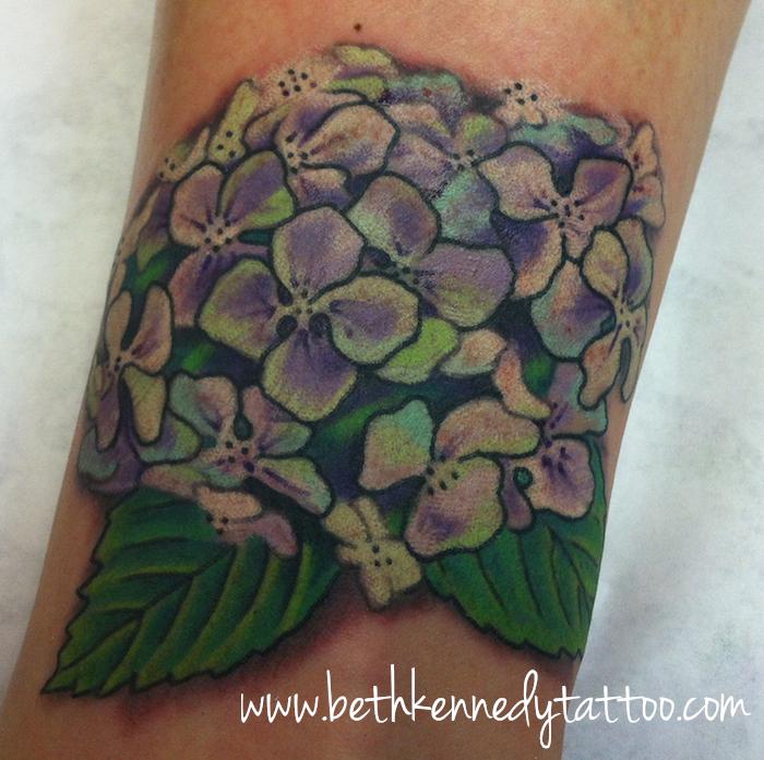 Hydrangea -Modern vintage botanical - Beth Kennedy