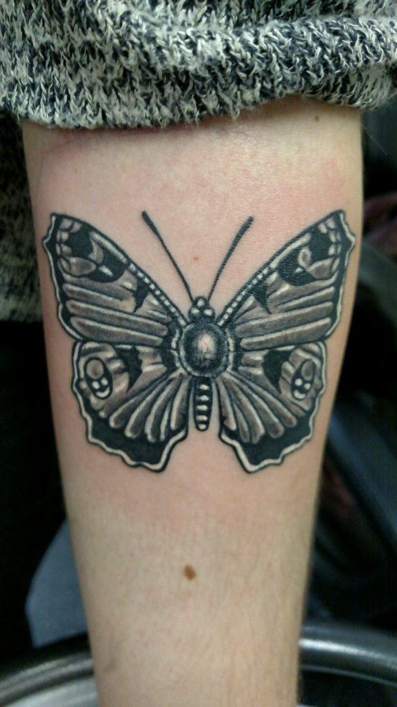 butterfly-moth-matt-presti